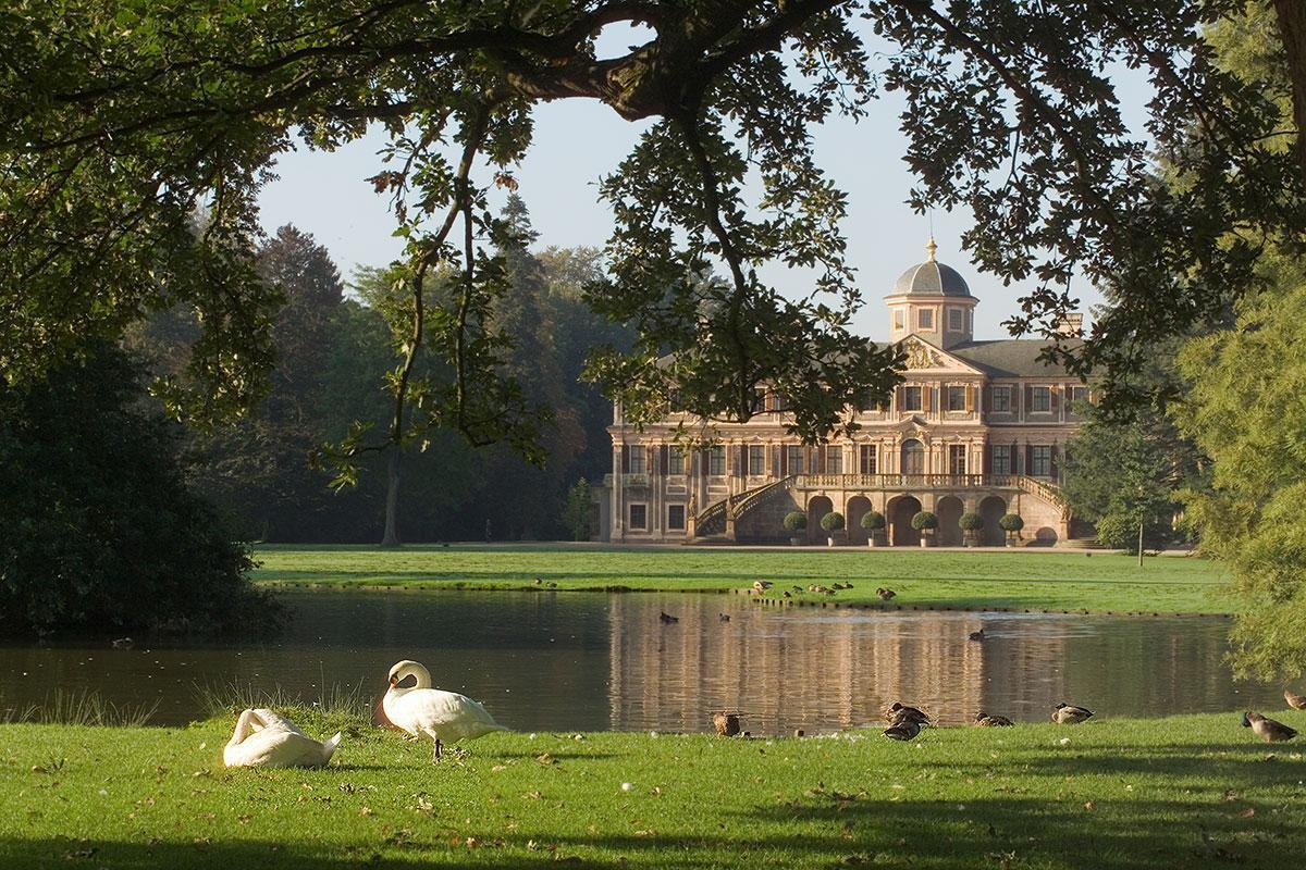 Image: Swans and ducks at Rastatt Favorite Palace