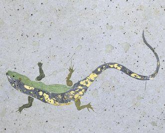 Eidechsenmotiv aus dem Scagliola-Boden im Florentiner Kabinett von Schloss Favorite Rastatt